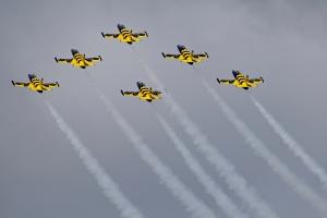 baltic-bees-jet-team---aero-l-39c-albatros-x6_39850747591_o